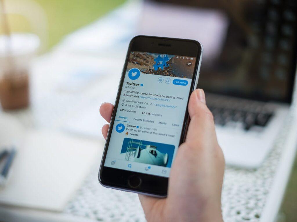 twitter-birdwatch-usuarios